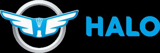 Halo Mobile Detailing